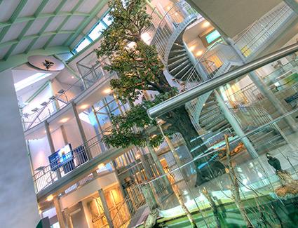 Architekt Pfoser: Landesmuseum NÖ — Vorschaubild